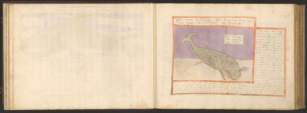 whale-book-coenensz-adriaen-p29.jpg