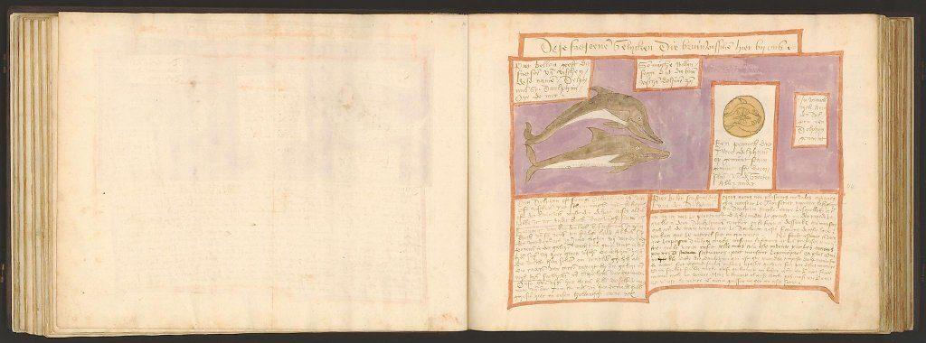 whale-book-coenensz-adriaen-p51.jpg